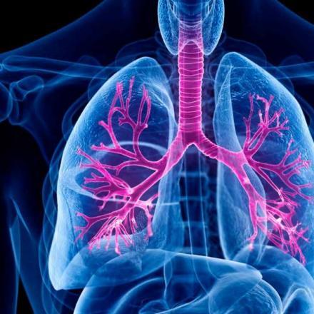 Illustratie van longen