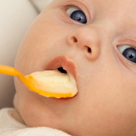 Gluten in babyvoeding